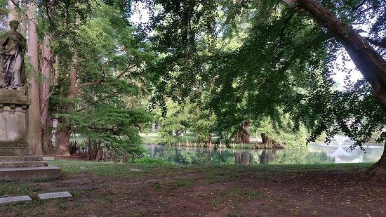 Spring Grove Cemetery & Arboretum: 20160723_090456_large.jpg