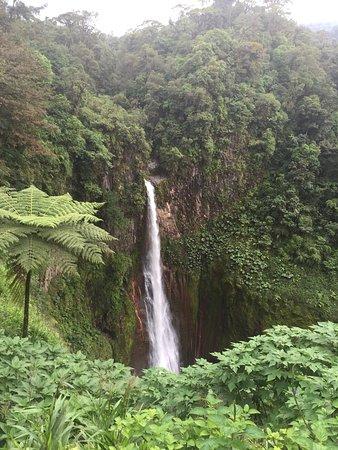 Bajos del Toro, Kosta Rika: photo4.jpg