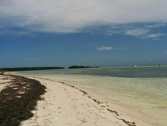 Bahia Honda State Park and Beach: IMG-20160729-WA0002_large.jpg