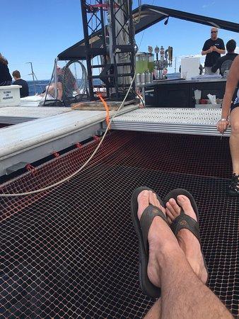 Nauti-Cat Cruises: photo3.jpg