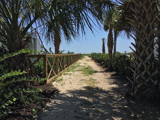 Isle of Palms Beach Image
