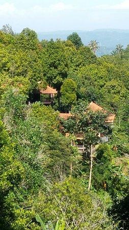 Munduk, Endonezya: 20160730_100640_large.jpg