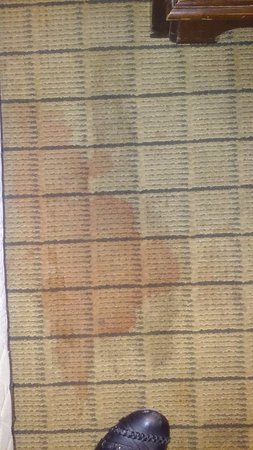 Days Inn Clinton: This is a stain on the carpet....