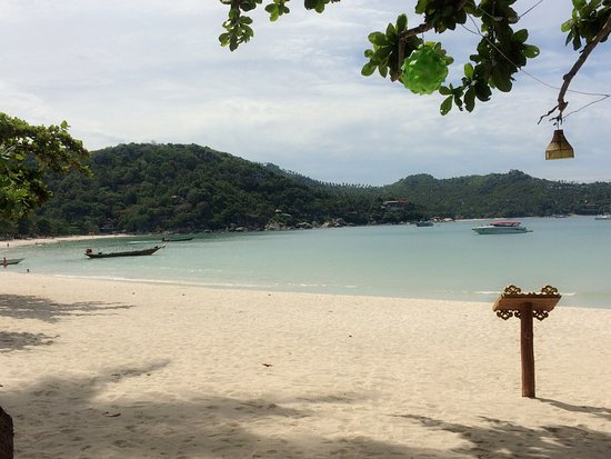 Nice Beach Resort: บรรญากาศดีมากๆเหมาะแก่การพักผ่อน