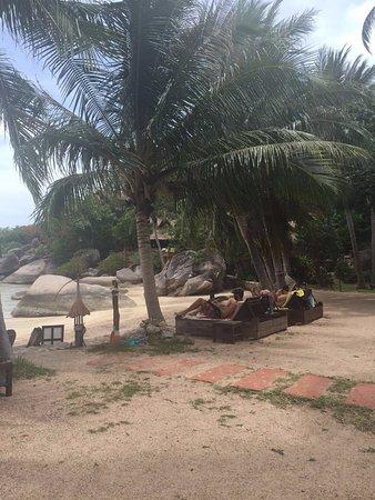 Koh Tao Cabana: החוף במלון
