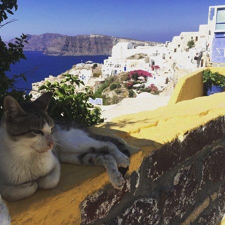 Santorini Secret Suites & Spa: photo4.jpg