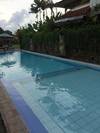 Sri Bungalows: Front Pool
