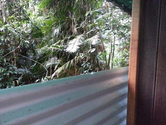 Diwan, Australia: View from the outdoor composting loo!