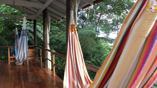 La Loma Jungle Lodge and Chocolate Farm: hammocks in cabin 4