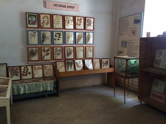 Isfara, Tadjiquistão: Экспозиция растительного мира