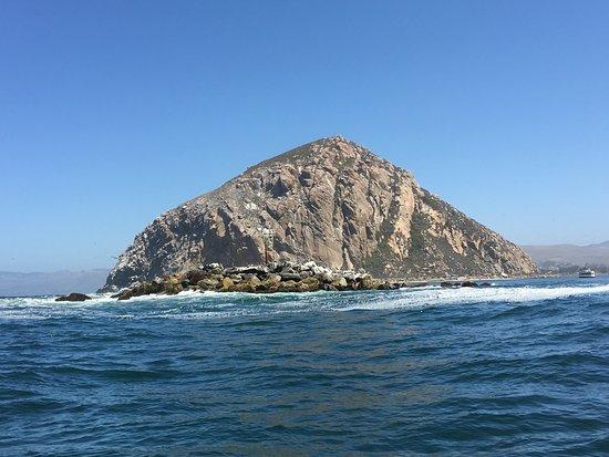 Morro Bay, Californien: Cruising outside the harbor around Morro Rock
