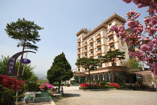 호텔 아마란스