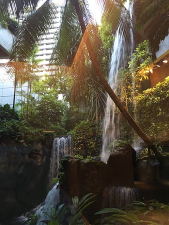 Grand Hyatt Singapore: photo0.jpg