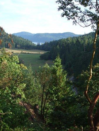 Fernhill Bed and Breakfast : Blick aus dem Garten der Fernhill Suite auf die Insel