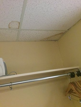Niagara Lodge & Suites: stained ceiling over coat rack