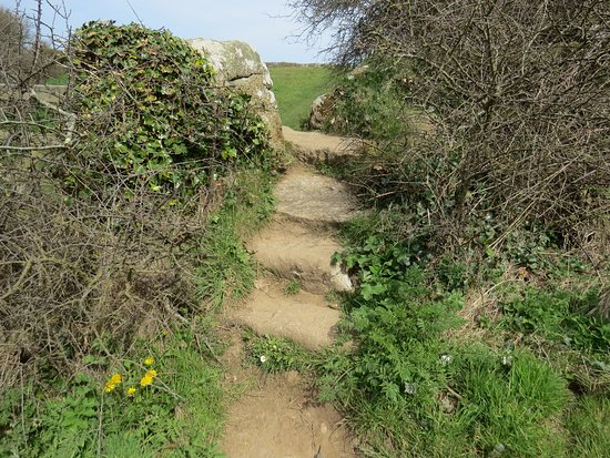 Lamorna, UK: Steps up to the Merry Maidens stone circle