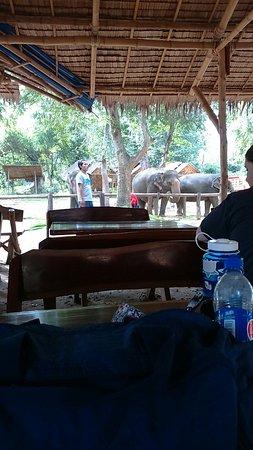 Kanchanaburi Province, Thailand: IMG-1469498673033-V_large.jpg