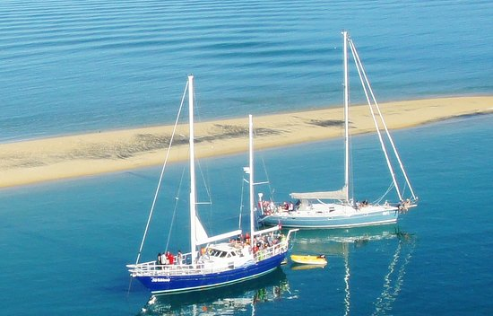 Gourmet Sailing : Our yachts at Adele Island in the Abel Tasman National Park