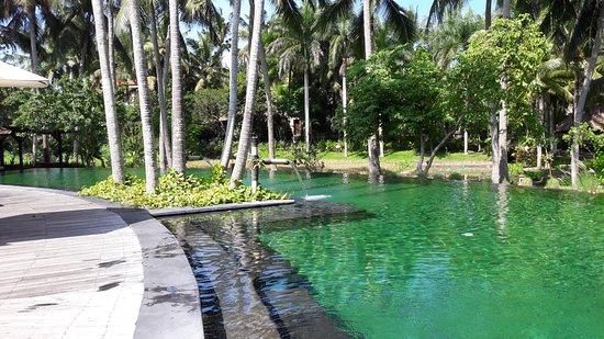The Ubud Village Resort & Spa: Infinitiv Pool