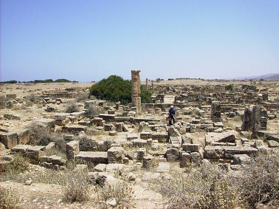 Al Bayda, ลิเบีย: Cyrene 9