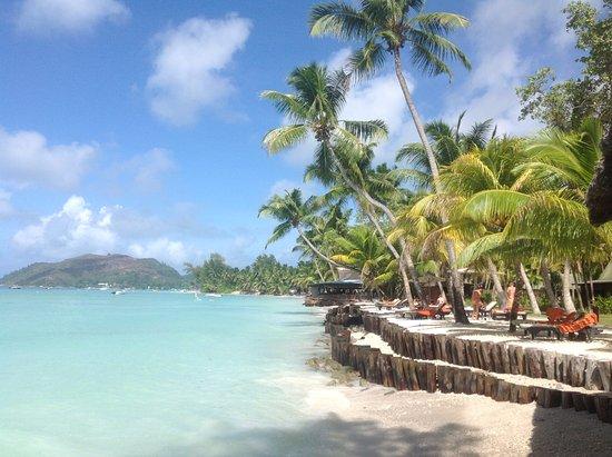 Paradise Sun: le matin le long de la plage .....