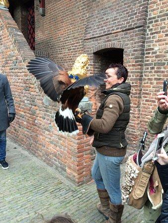 Muiden, Países Bajos: Apresentação de falcoaria. Sucesso absoluto com as crianças e adultos.