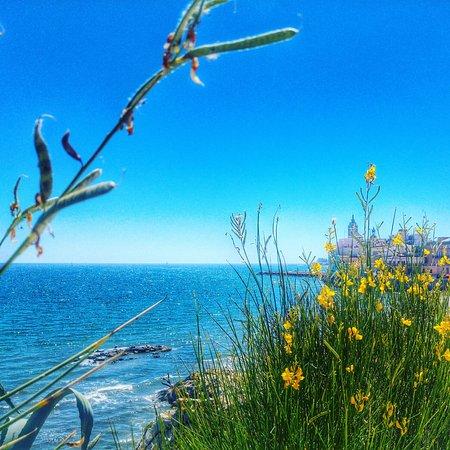 La Playa de Sitges: Viva España, viva Sitges!🌆❤🌴