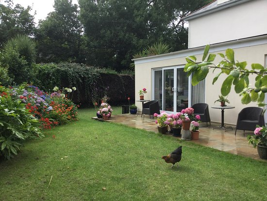 Vale, UK: Guest patio