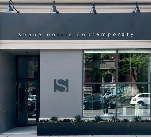 shane norrie contemporary