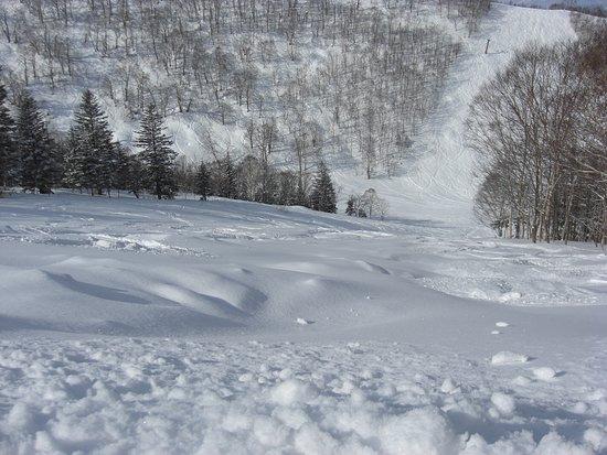 Rusutsu Resort Ski Foto