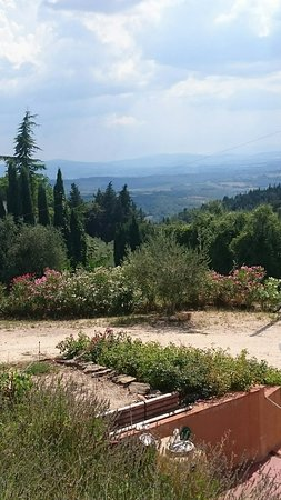 Take Me Out in Tuscany : DSC_1094_large.jpg
