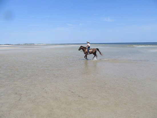 Cedar Island, NC: Beach riding on Duke