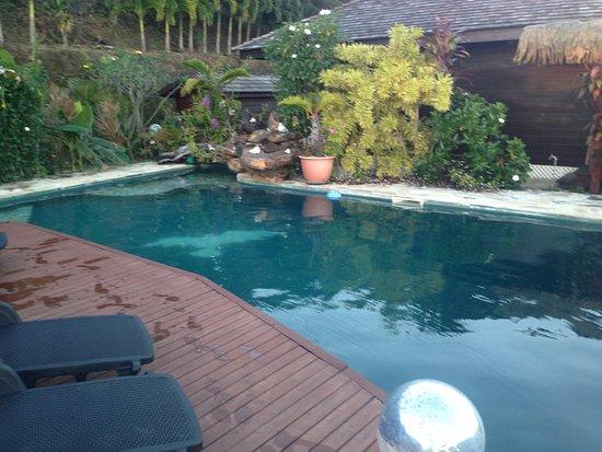 Fare D'Hote Tehuarupe Hotel: pool area