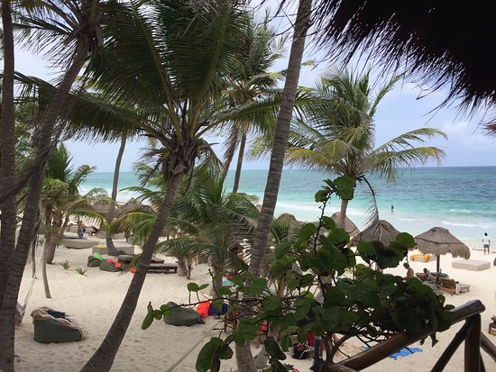 Rosa del Viento: View at the beach from the restaurant