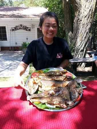 Caliente, CA: Fresh trout from the pond