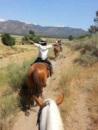 Caliente, Californien: Gentle horses gives you confidence