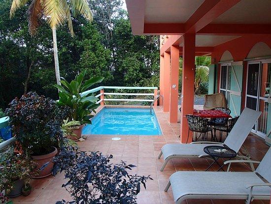 Calibishie, Dominique : Private Pool and Terrace