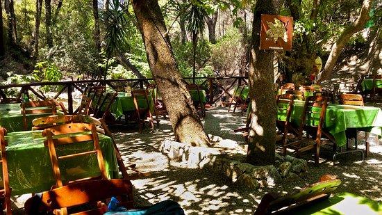 Archangelos, Grecja: Svoje místečko pod stromy poskytující příjemný stín si určitě najdete