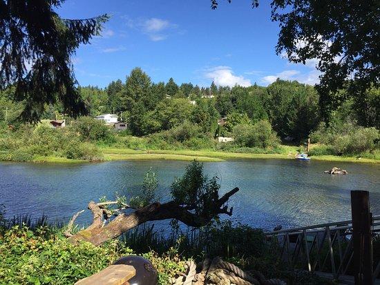 Lake Cowichan, Канада: photo5.jpg