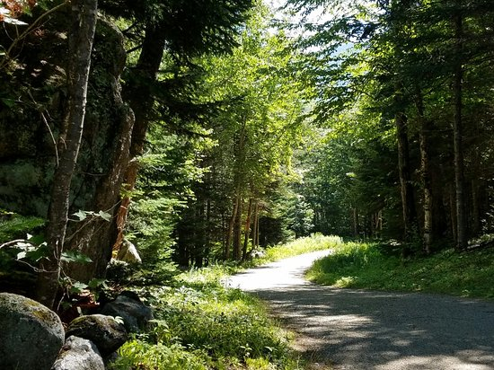 Great Glen Trails Outdoor Center: We love to meander through the trails.