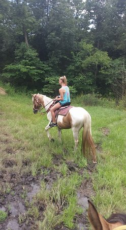 Old Family Farm Trail Rides: My daughter on the paint Arapaho