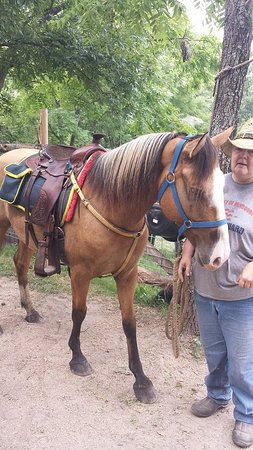Old Family Farm Trail Rides: My Dun, Klondike and our tour guide