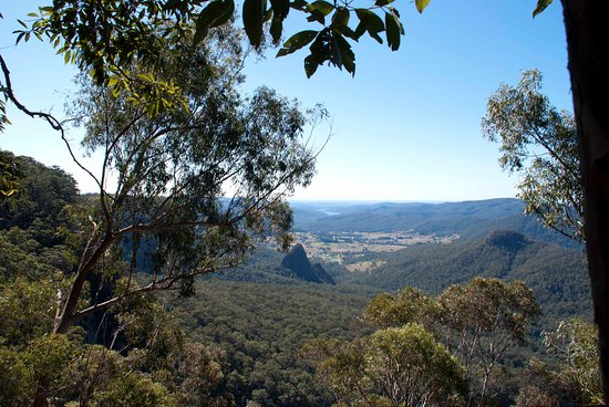 Bellbird Lookout & Circuit