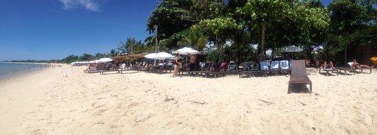 Resort La Torre: panoramica clube de praia La Torre Resort com muitas espreguiçadeiras muito bem servido!!!