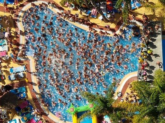 Hotel Flamingo Benidorm Reviews