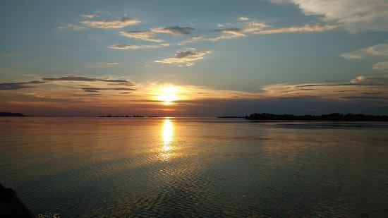 Amazing Tours Agency Day Tour : Inesquecível! Pôr-do-sol área de igapó.