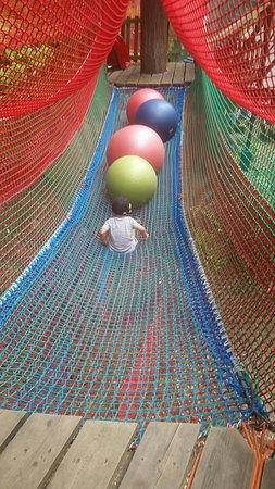Skytrek Adventure Park: 20160730_112223_large.jpg