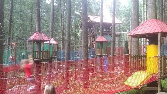 Skytrek Adventure Park: 20160730_112646_large.jpg