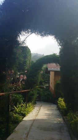 Hotel Cipreses Monteverde Costa Rica: Back walkway