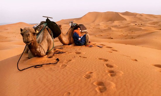 Camel Trekking - Day Tours: photo0.jpg